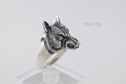 Кольцо волк или с головой волка из серебра и золота. izai (1)